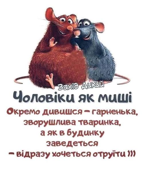 https://st.kashalot.com/img/club/2020/01/27/FB_IMG_1578210334223-e3c9d817-club.jpg